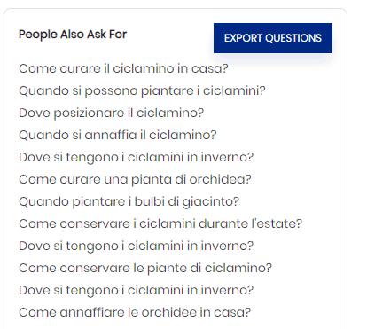 serp google esempio di domande utenti